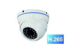 Купольная IP камера Longse LS-IP200SP/42H265